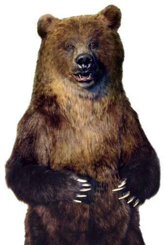 ANIMATEDFX - Animatronic Grizzly Bear